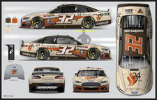 NASCAR Texas Motor Speedway - Sunday's AAA Texas 500 News